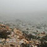 تساقط الثلوج بمعتمدية تالة ولاية القصرين